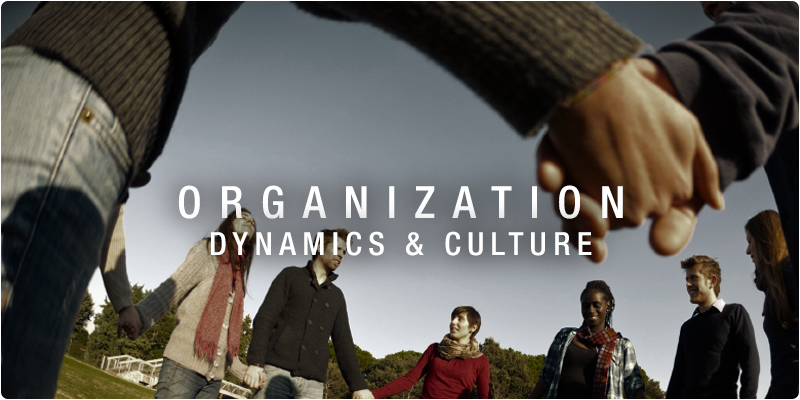 Organizational dynamics and culture